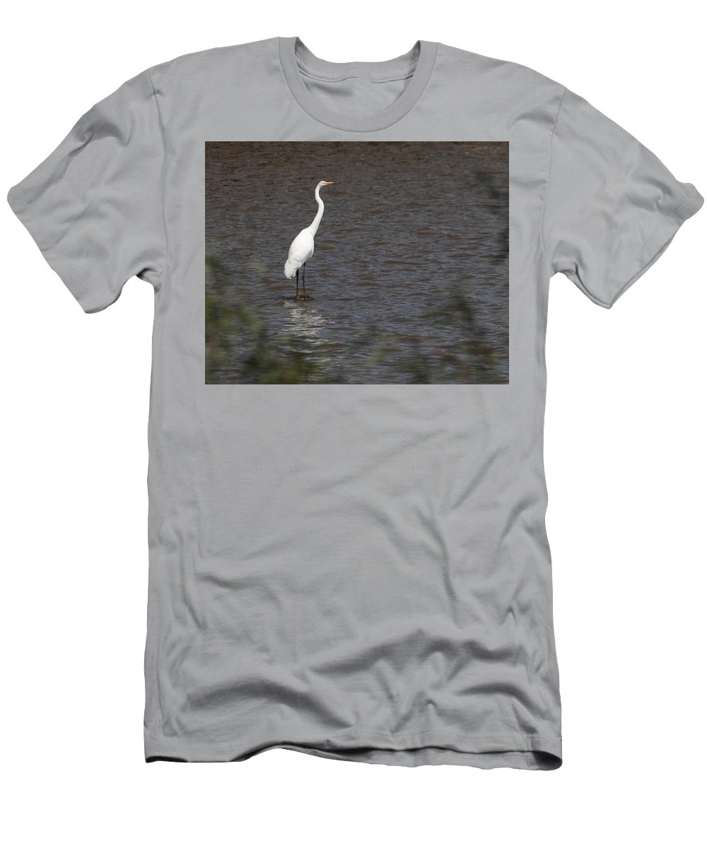 Great Egret Men's T-Shirt (Athletic Fit) featuring the photograph Great Egret 3211 by John Moyer