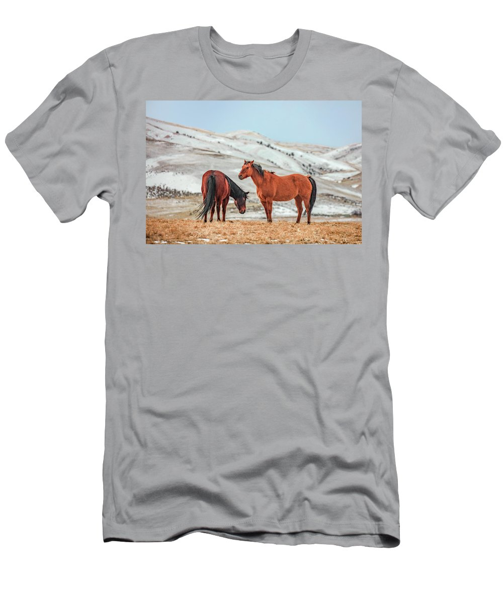 Horses Men's T-Shirt (Athletic Fit) featuring the photograph Hairy Horses by Todd Klassy