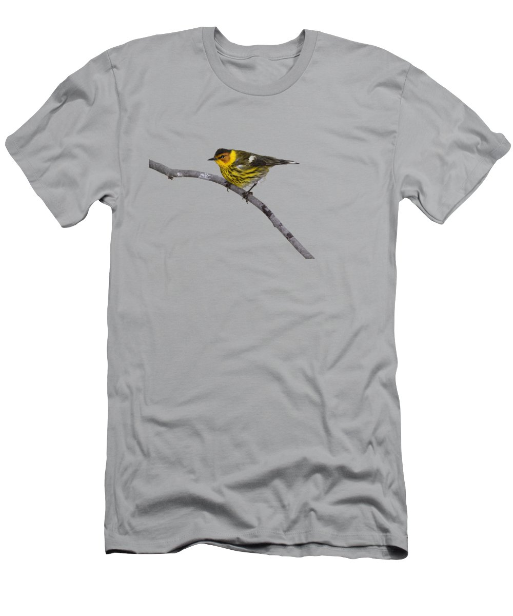 Warbler Men's T-Shirt (Athletic Fit) featuring the photograph Male Cape May Warbler by Marlin and Laura Hum