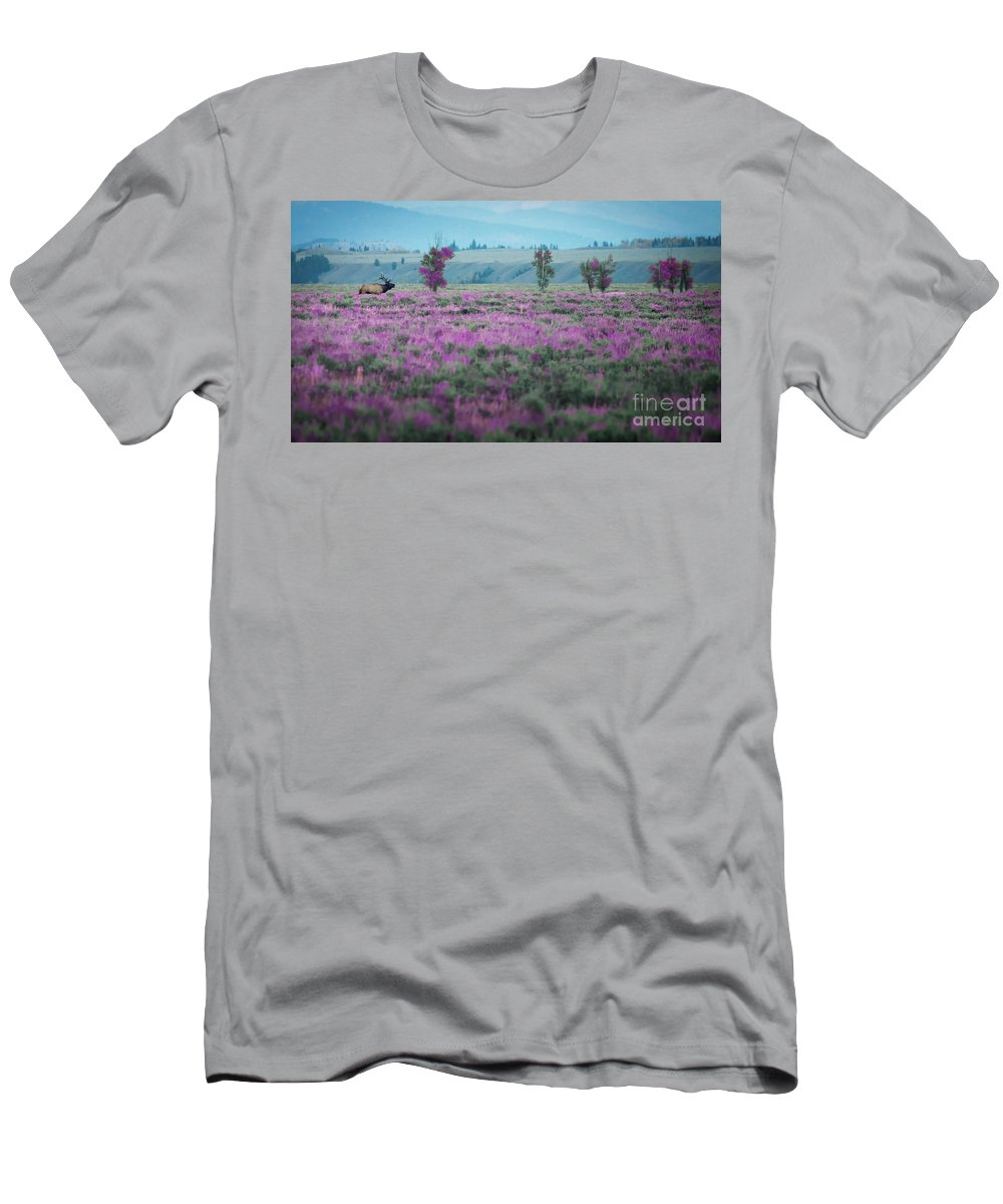 Moose At Dusk Outside Of Jackson Men's T-Shirt (Athletic Fit) featuring the photograph Purple Grain by Doug Sturgess
