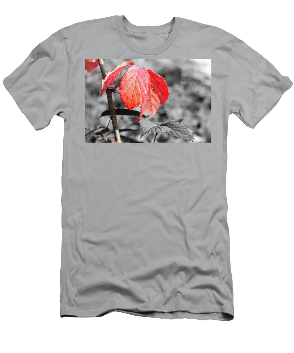 Rusty Men's T-Shirt (Athletic Fit) featuring the pyrography Rusty Leaves by Robert Daradics