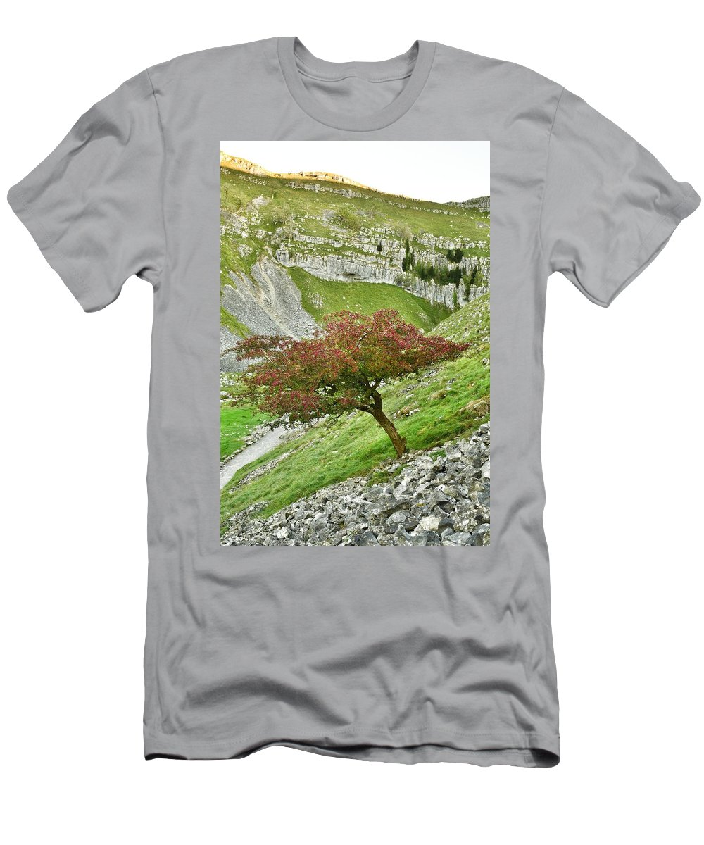 Tree Men's T-Shirt (Athletic Fit) featuring the photograph Standing Strong by Daniel McNamara