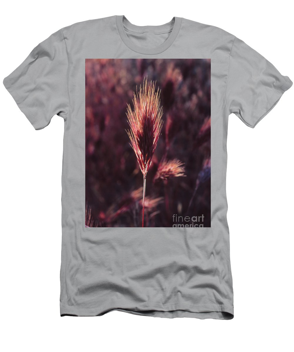 T-Shirt featuring the photograph Untitled by Randy Oberg