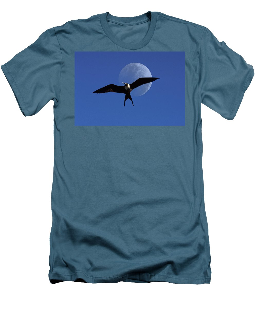 Frigate Men's T-Shirt (Athletic Fit) featuring the photograph Frigatebird Moon by Jerry McElroy