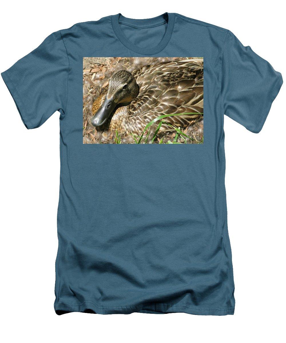 Mallard Men's T-Shirt (Athletic Fit) featuring the photograph Nesting Mallard by Ann Horn