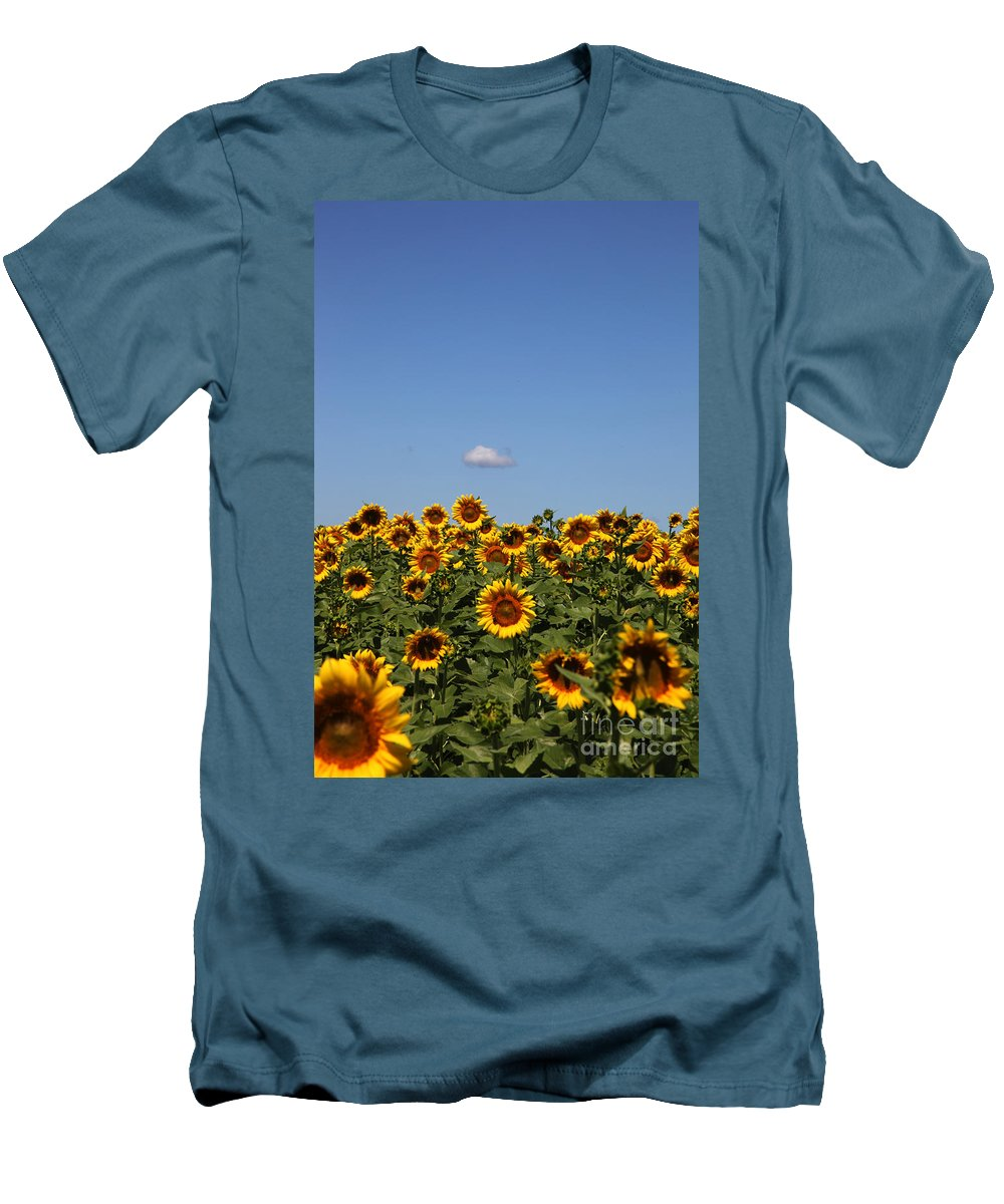Sunflower Men's T-Shirt (Athletic Fit) featuring the photograph Passing By by Amanda Barcon