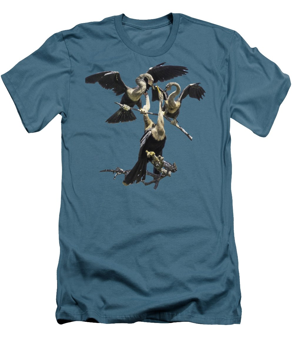 Anhinga Slim Fit T-Shirts