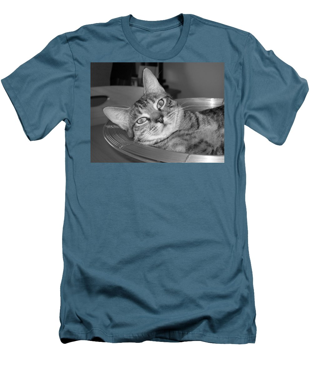 Cat Men's T-Shirt (Athletic Fit) featuring the photograph A Bowl Of Ginger by Maria Bonnier-Perez