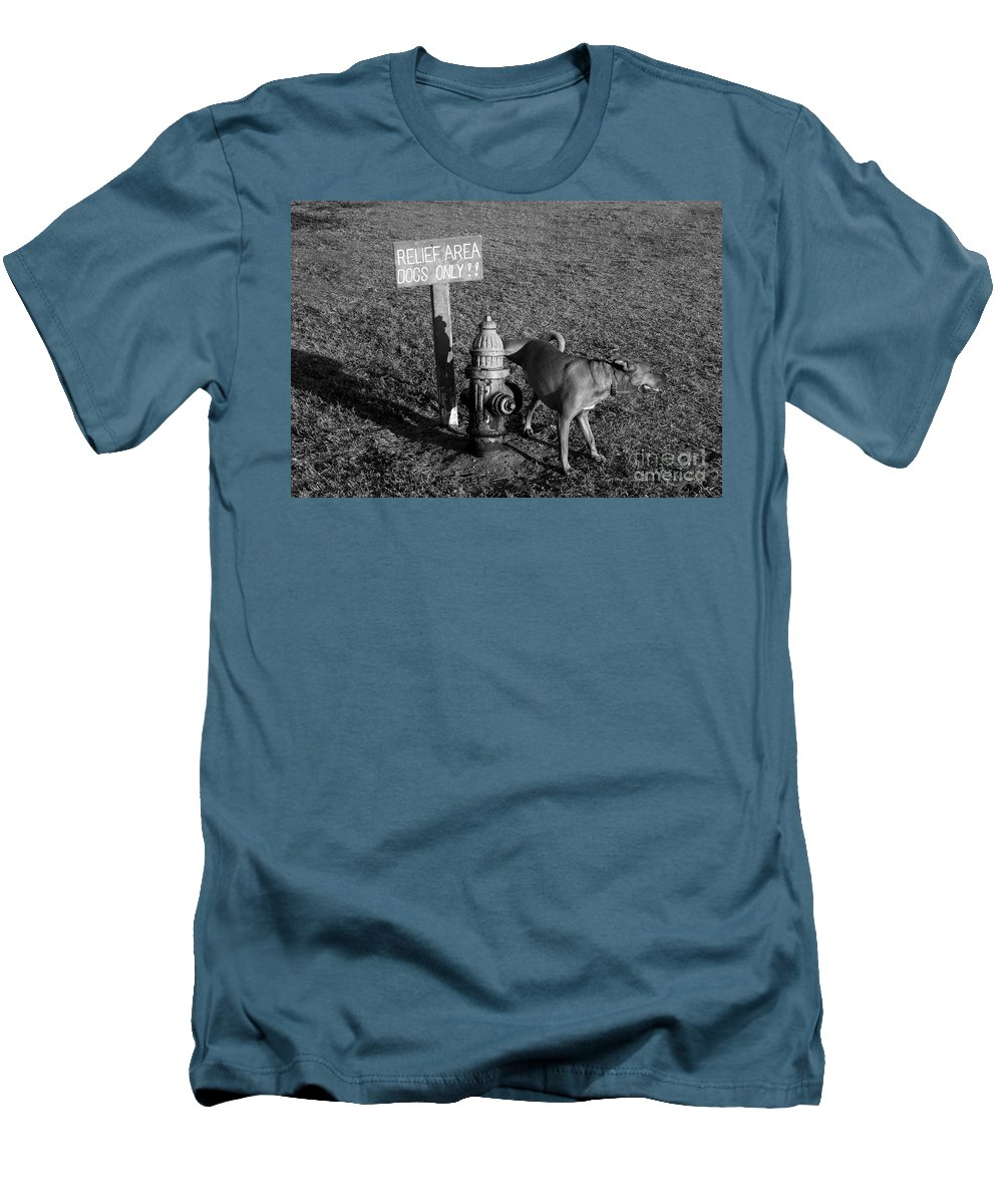 Dog Men's T-Shirt (Athletic Fit) featuring the photograph A Dog's Life by David Lee Thompson