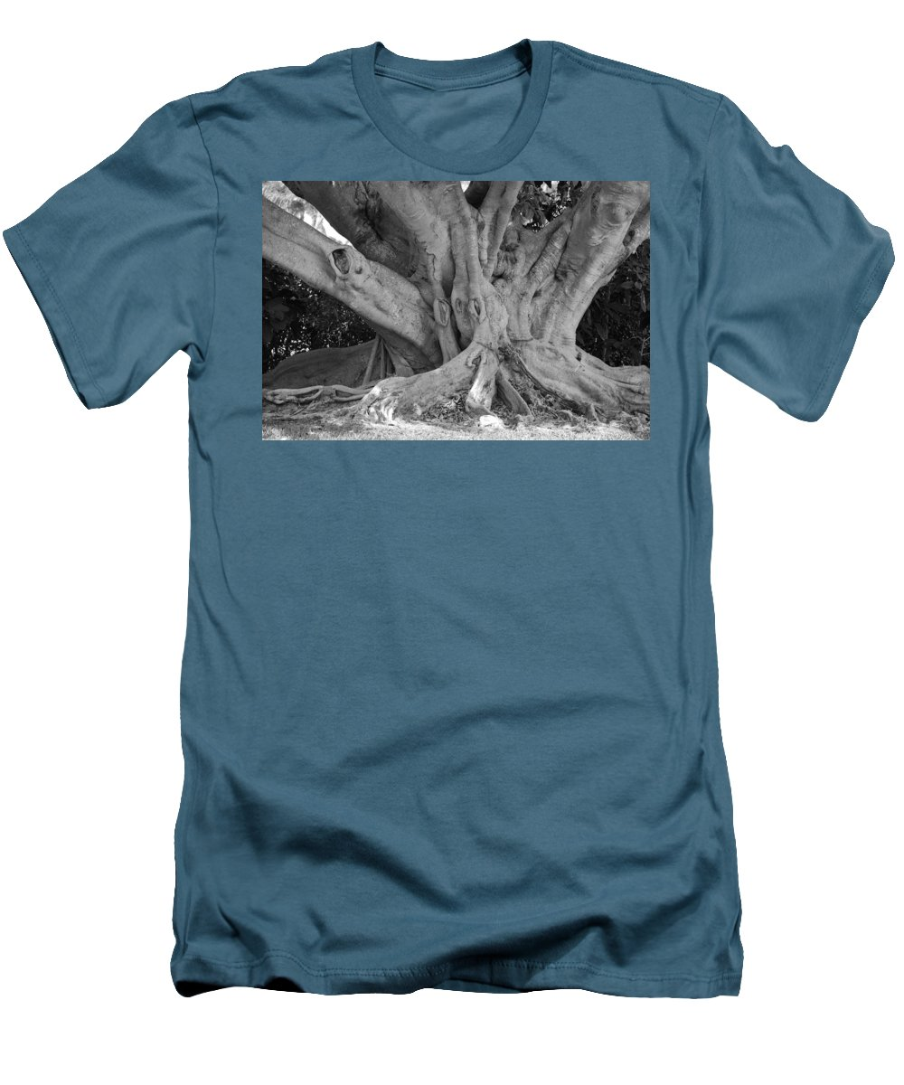Tree Men's T-Shirt (Athletic Fit) featuring the photograph Banyan Tree by Rob Hans