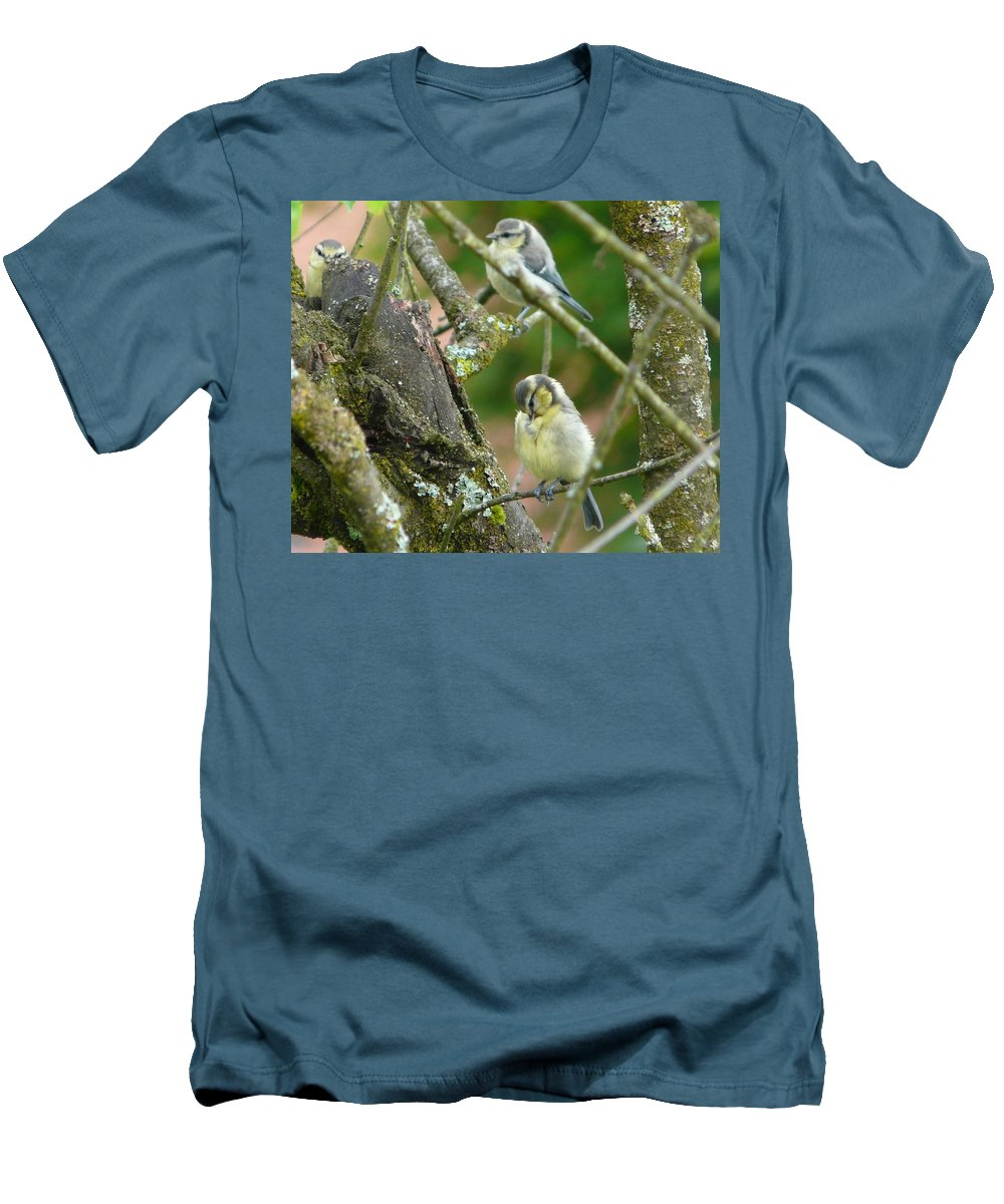 Bird Men's T-Shirt (Athletic Fit) featuring the photograph Busy Tree by Valerie Ornstein