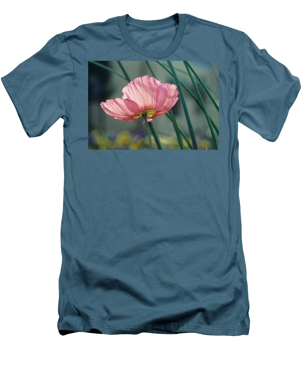 California Poppy Men's T-Shirt (Athletic Fit) featuring the photograph California Poppy by Laurie Paci