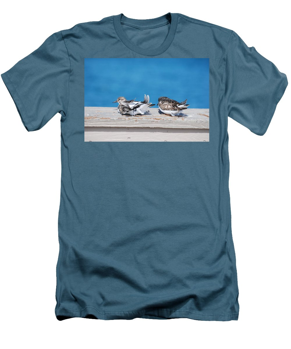 Bird Men's T-Shirt (Athletic Fit) featuring the photograph Cold Birds by Rob Hans