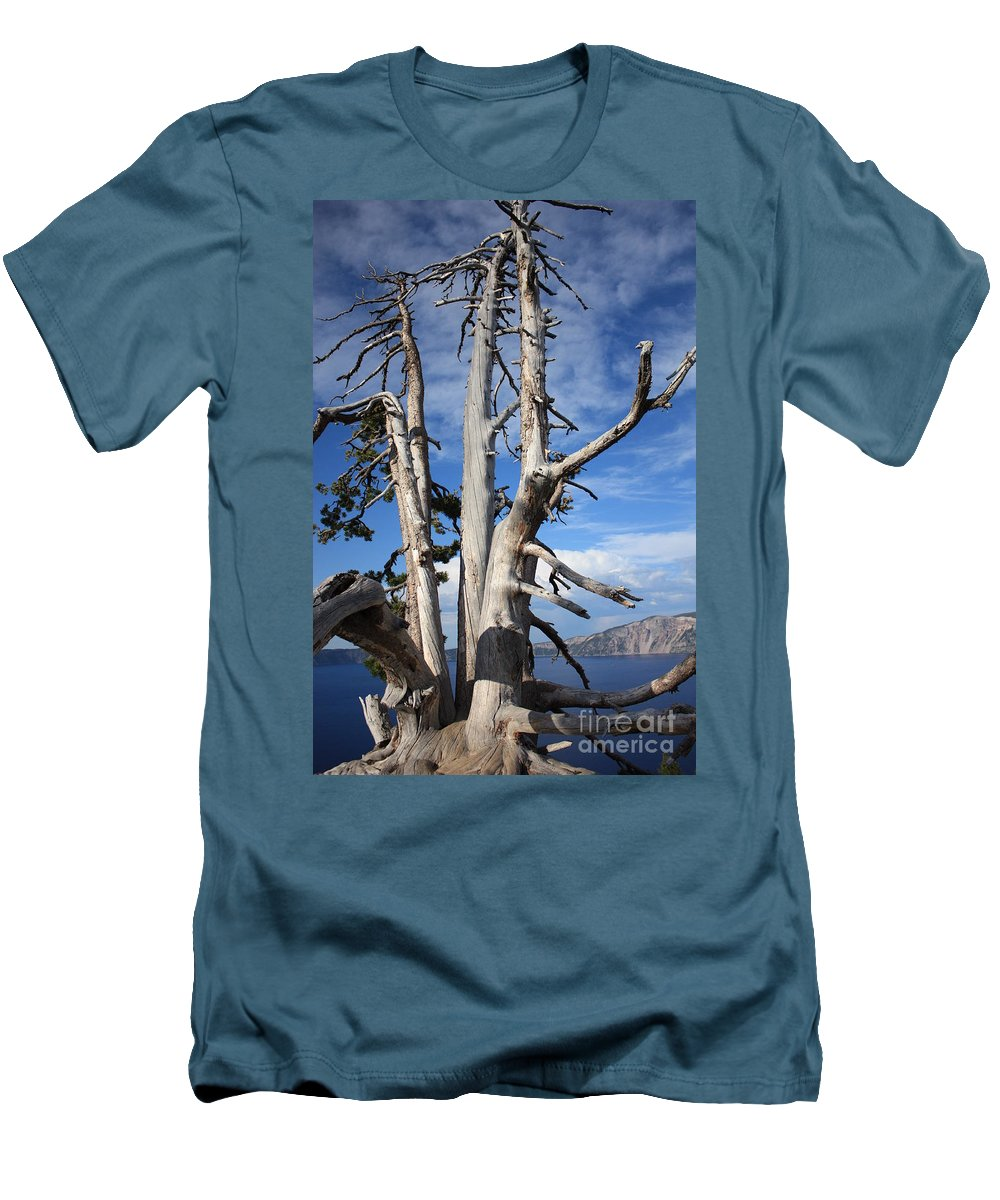 Tree Men's T-Shirt (Athletic Fit) featuring the photograph Crater Lake Tree by Carol Groenen
