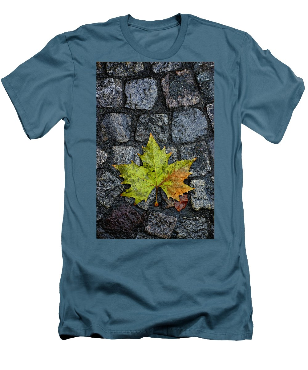 Nature Men's T-Shirt (Athletic Fit) featuring the photograph Deville by Skip Hunt