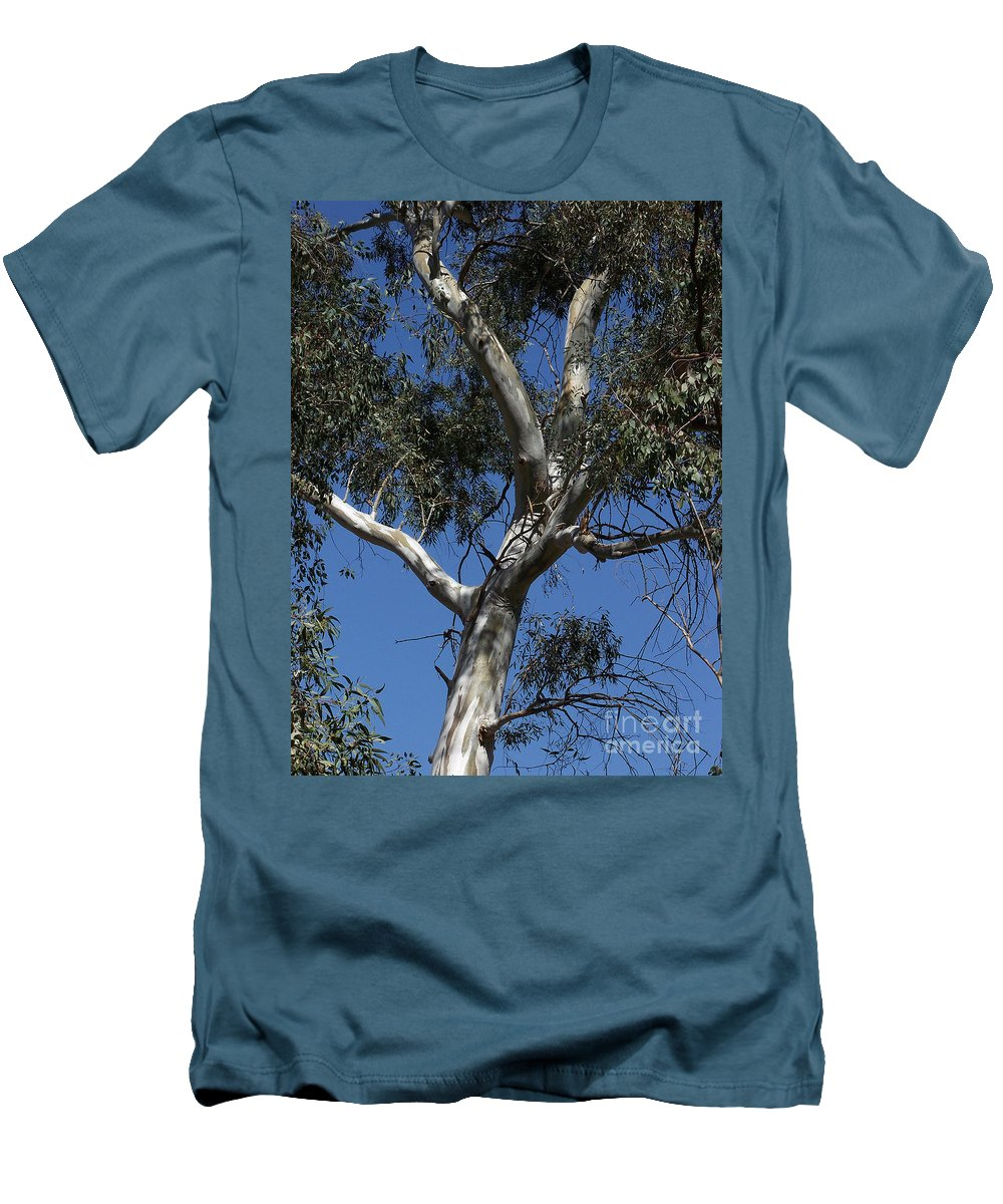 Trees Men's T-Shirt (Athletic Fit) featuring the photograph Eucalyptus by Kathy McClure