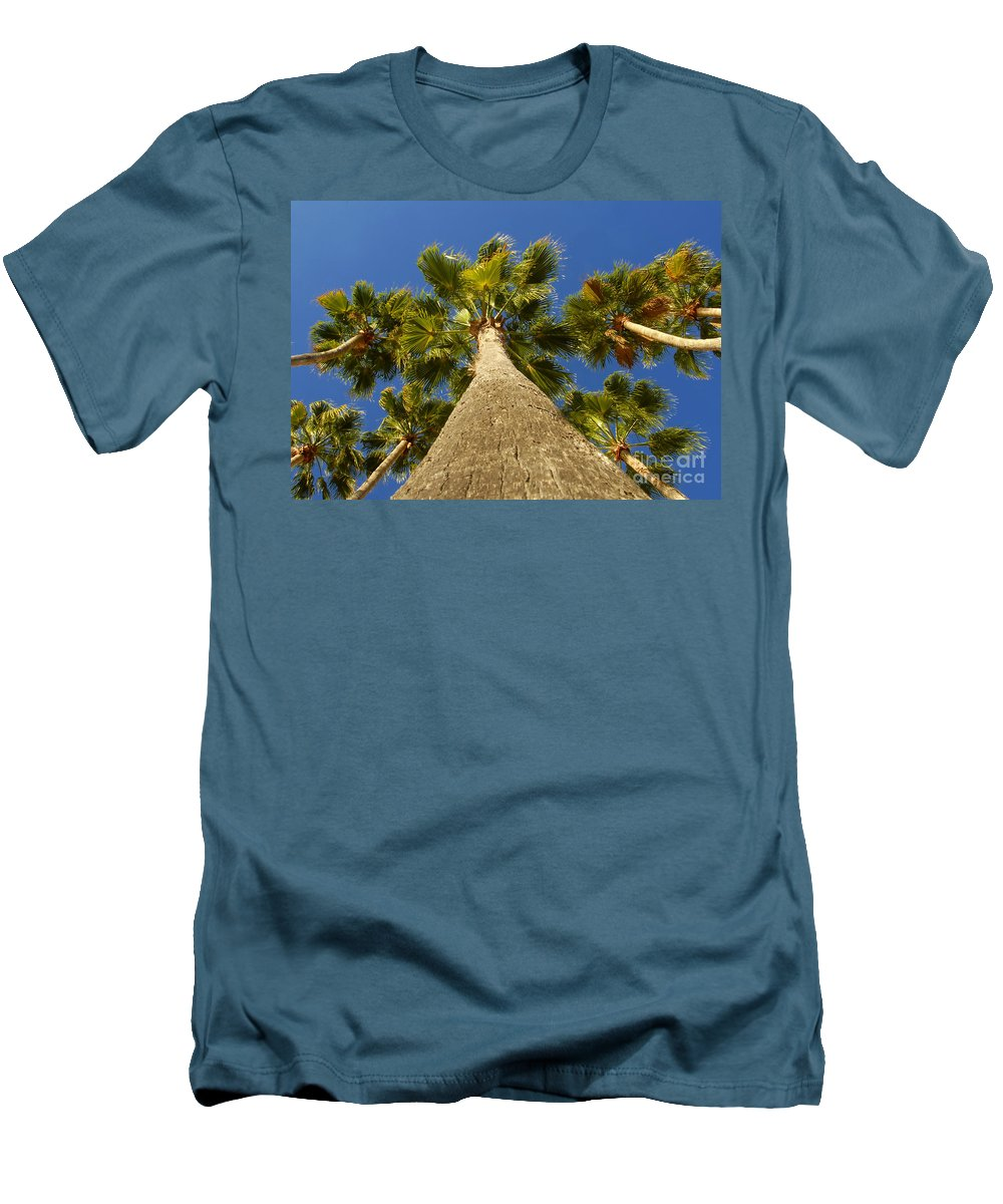Florida. Palm Trees. Tropical Men's T-Shirt (Athletic Fit) featuring the photograph Florida Palms by David Lee Thompson