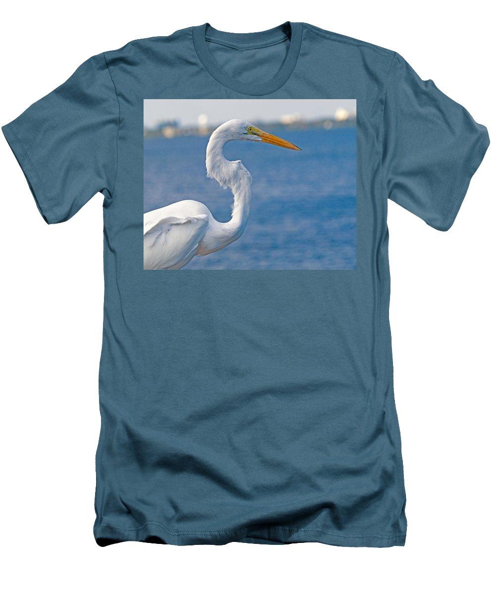 Great; Egret; Ardea; Alba; Bird; Seabird; Ocean; Indian; River; Lagoon; Sea; Melbourne; Beach; Breva Men's T-Shirt (Athletic Fit) featuring the photograph Great Egret At Melbourne Beach by Allan Hughes
