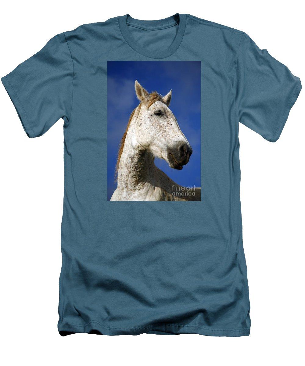 Animals Men's T-Shirt (Athletic Fit) featuring the photograph Horse Portrait by Gaspar Avila