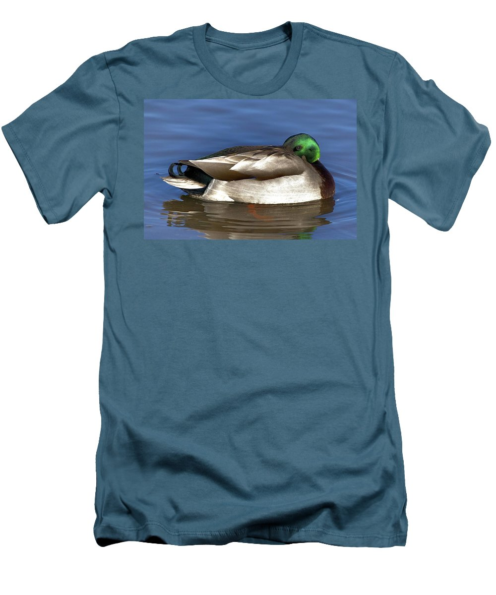 Duck Men's T-Shirt (Athletic Fit) featuring the photograph Peek A Boo by Robert Pearson
