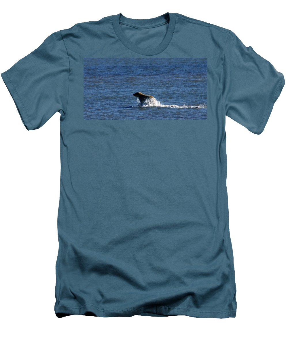 Bear Men's T-Shirt (Athletic Fit) featuring the photograph Polar Bear by Anthony Jones