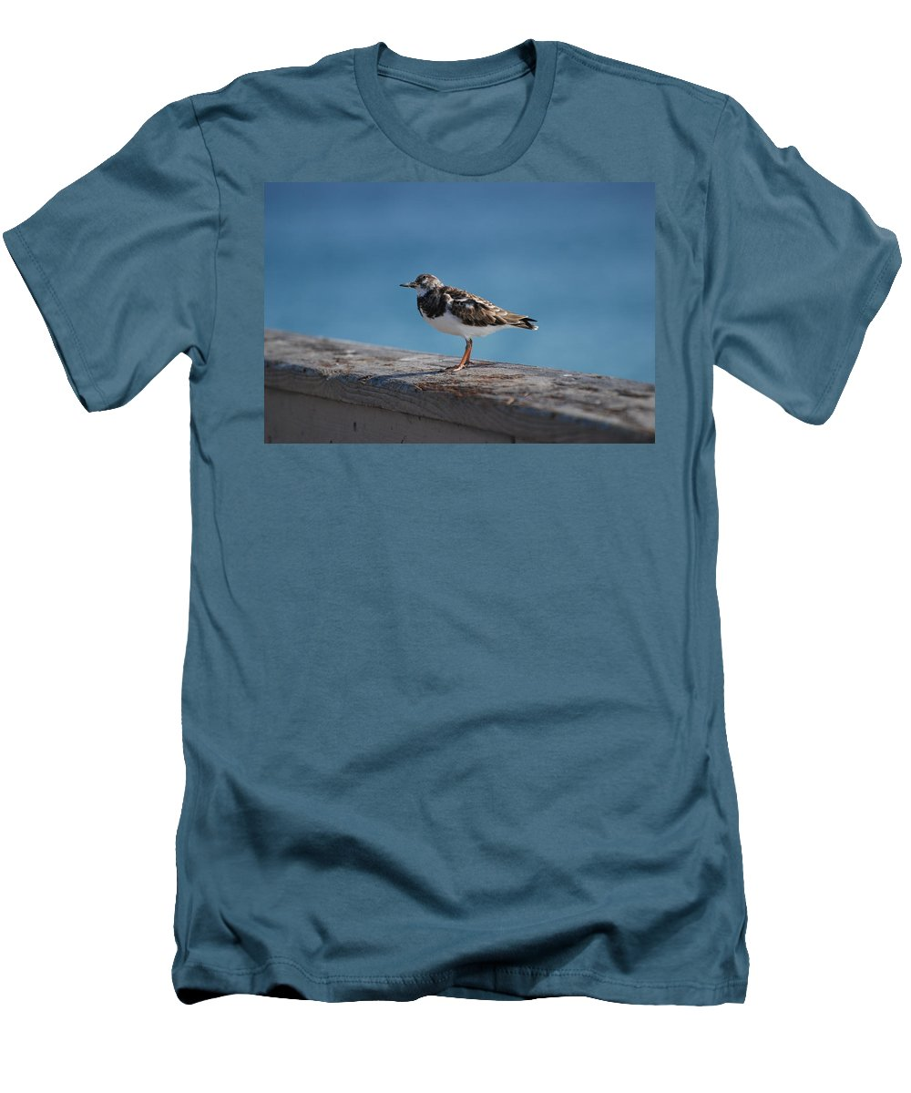 Bird Men's T-Shirt (Athletic Fit) featuring the photograph Tippi Hedren by Rob Hans