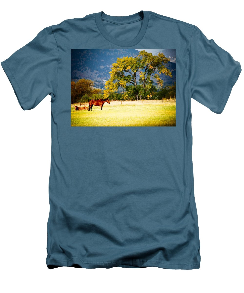 Animal Men's T-Shirt (Athletic Fit) featuring the photograph Two Horses by Marilyn Hunt