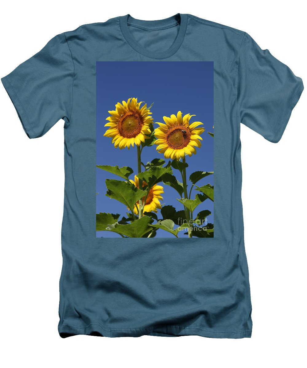 Sunflower Men's T-Shirt (Athletic Fit) featuring the photograph Viewing The Past by Amanda Barcon