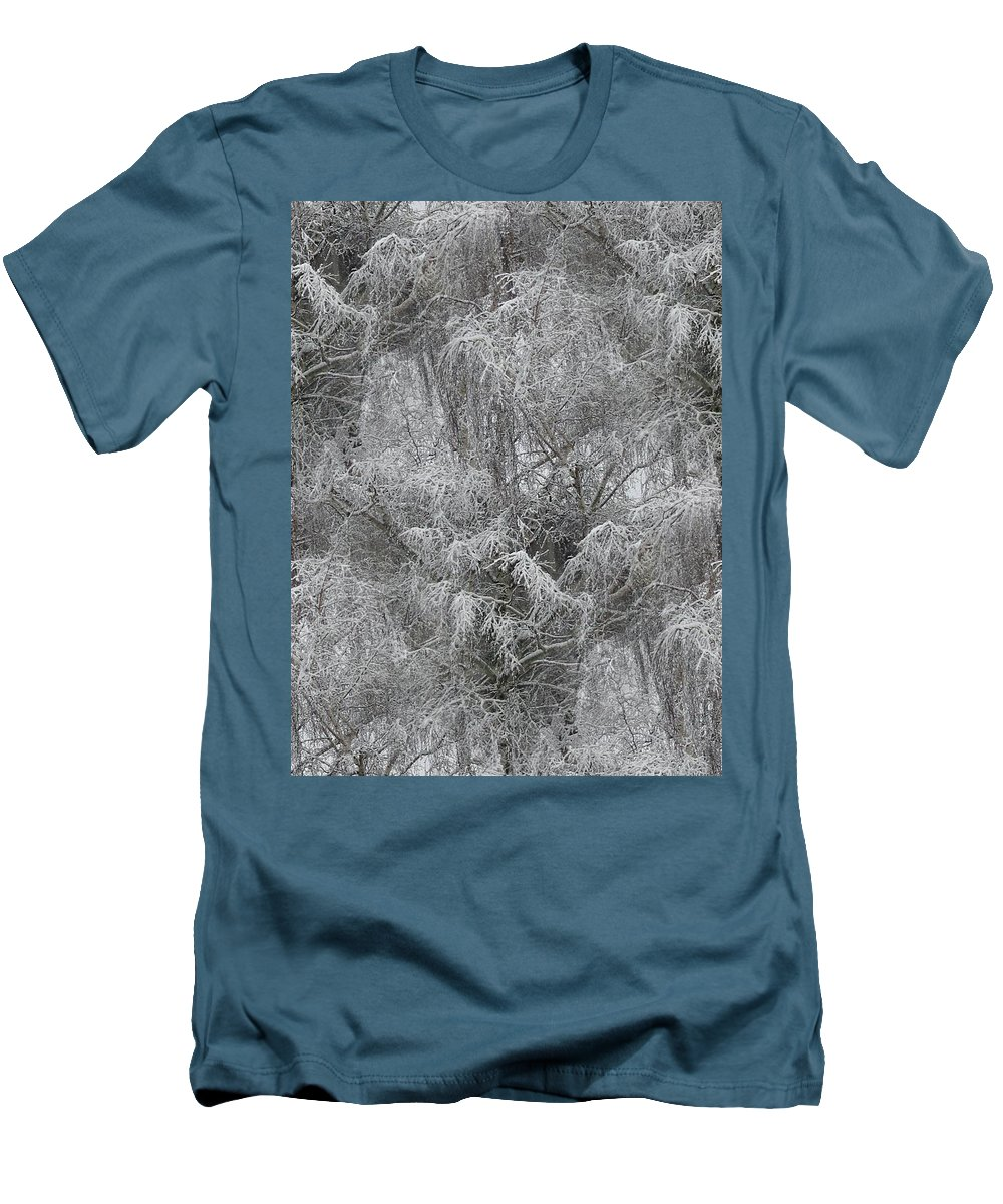 Winter Men's T-Shirt (Athletic Fit) featuring the photograph Winter Trees by Tim Allen