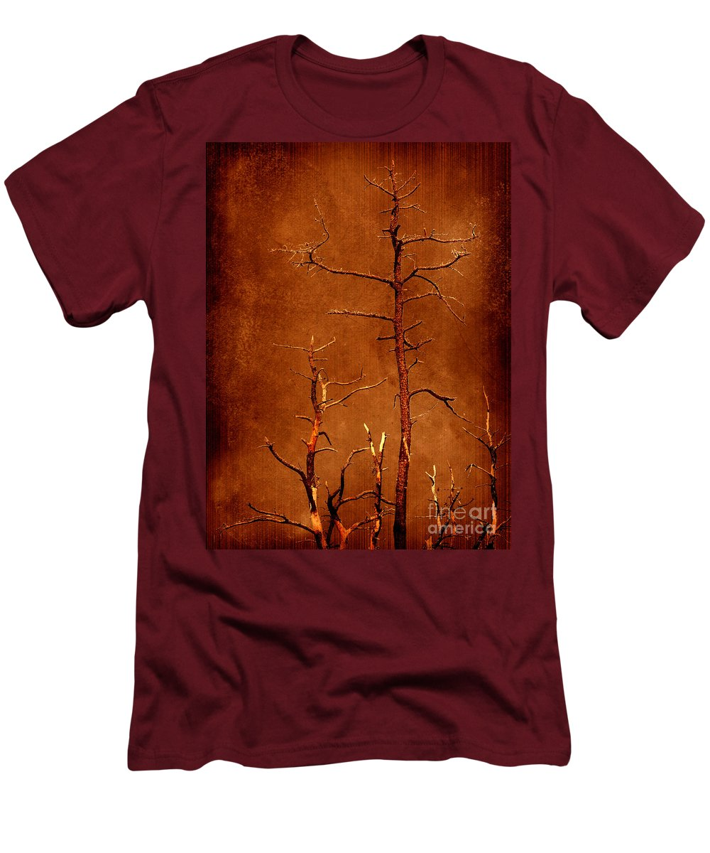Dipasquale Men's T-Shirt (Athletic Fit) featuring the photograph Left Bare And Broken by Dana DiPasquale