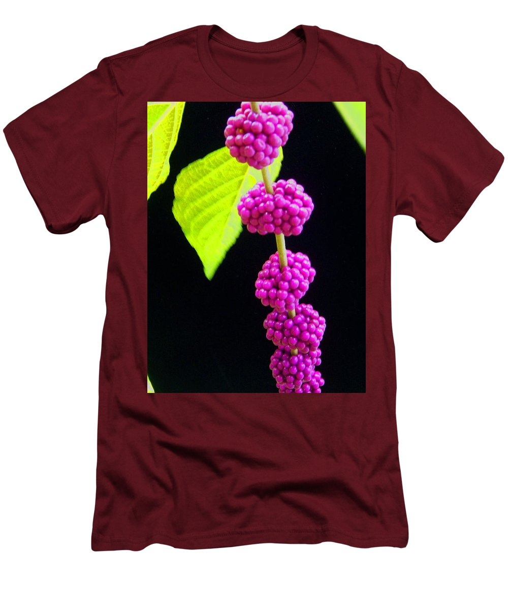 Flower Men's T-Shirt (Athletic Fit) featuring the photograph Stalk Of Seeds by Laurie Paci