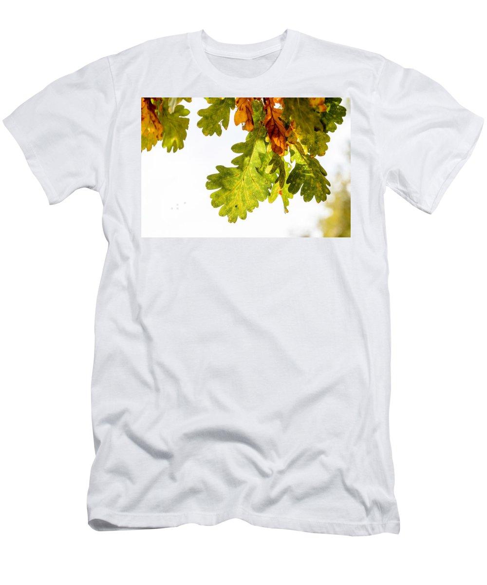 Autumn Men's T-Shirt (Athletic Fit) featuring the photograph Autumn Oak Leaves by Alain De Maximy