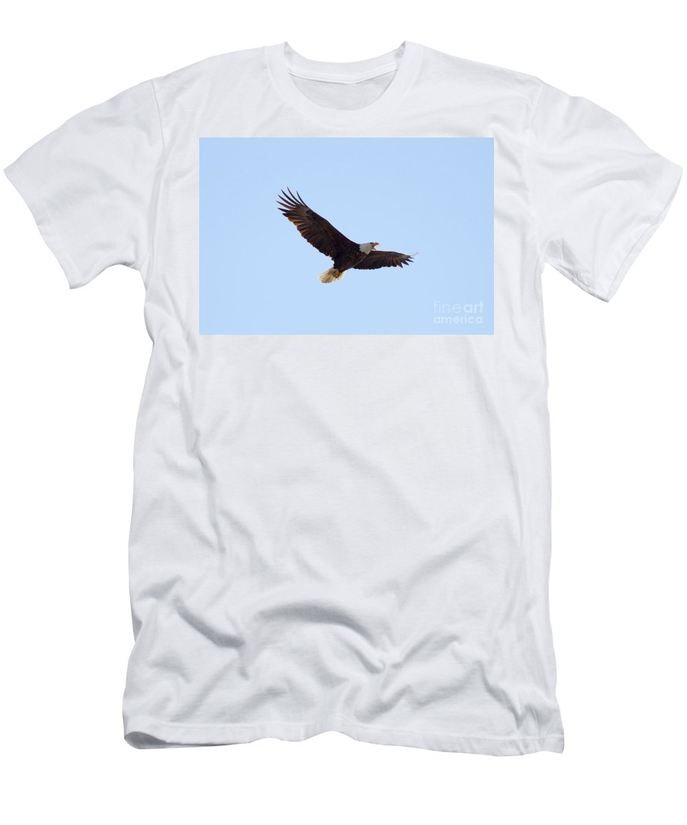 Eagle Men's T-Shirt (Athletic Fit) featuring the photograph Bald Eagle Calling by Lori Tordsen