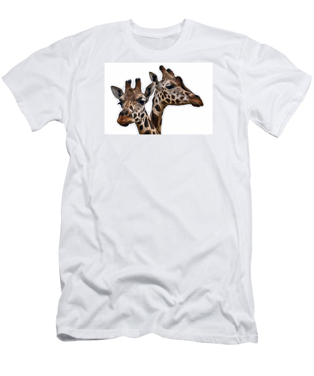 Animal Men's T-Shirt (Athletic Fit) featuring the photograph Giraffes by Marcia Colelli