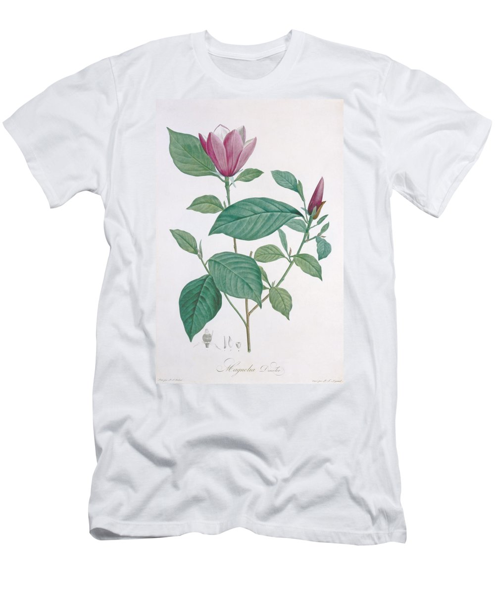 Redoute Men's T-Shirt (Athletic Fit) featuring the drawing Magnolia Discolor, Engraved By Legrand by Henri Joseph Redoute