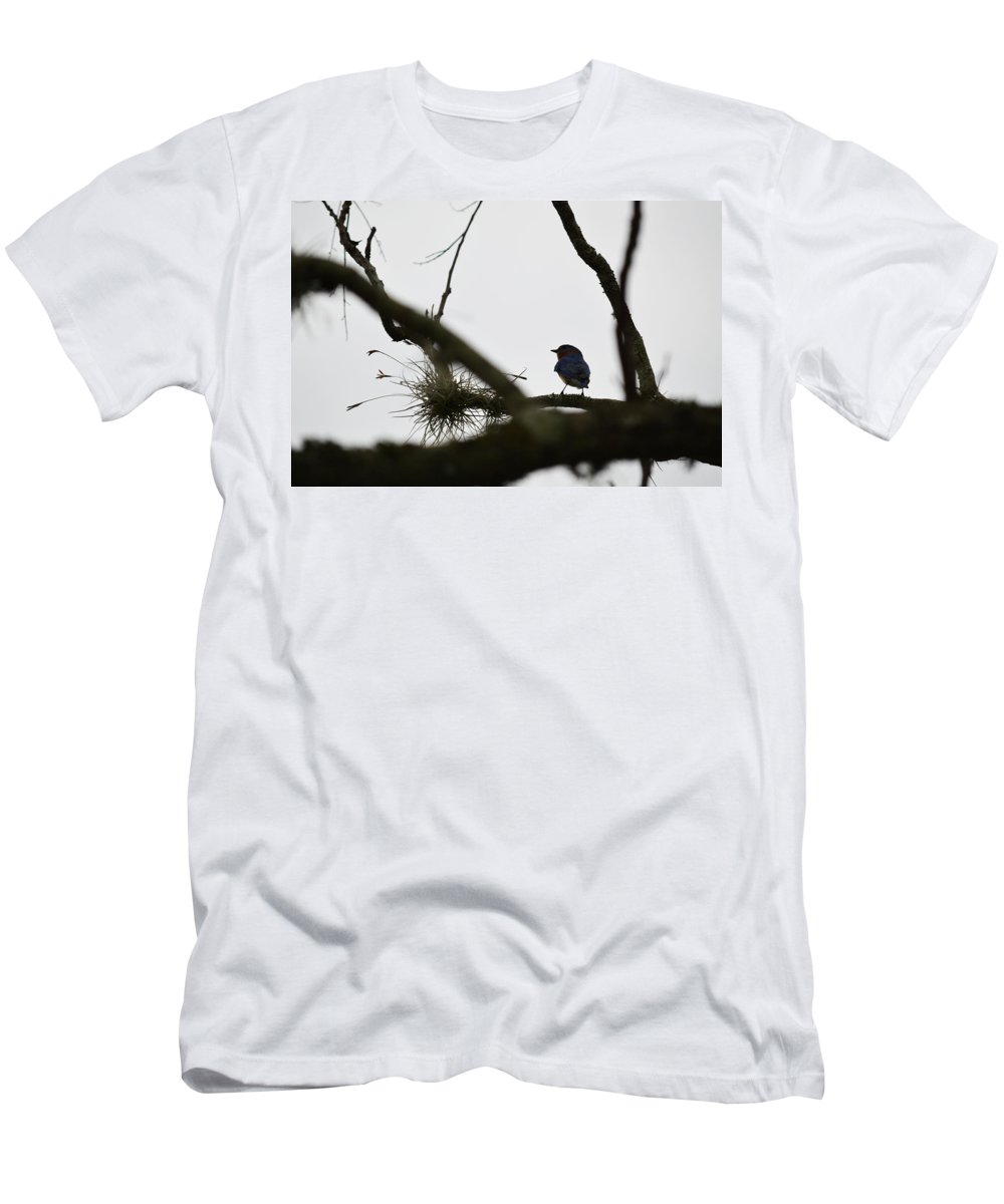 Blue Bird Men's T-Shirt (Athletic Fit) featuring the photograph Perched by Linda Kerkau