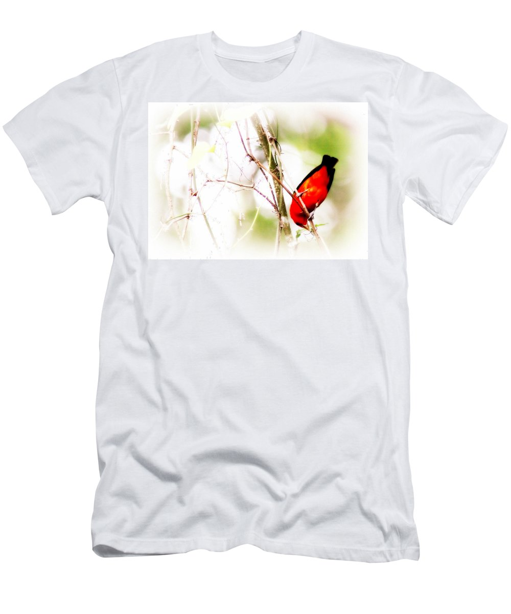 Scarlet Tanager Men's T-Shirt (Athletic Fit) featuring the photograph Scarlet Tanager by Travis Truelove