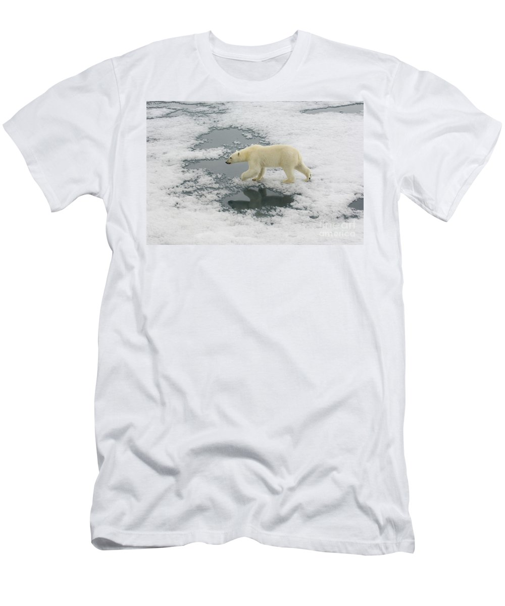 Polar Bear Men's T-Shirt (Athletic Fit) featuring the photograph Polar Bear Crossing Ice Floe by John Shaw