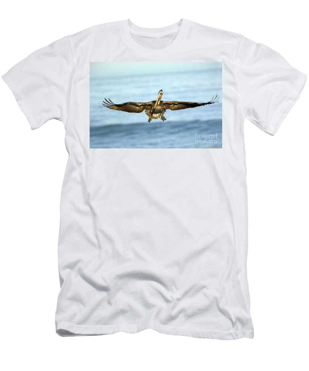 Brown Pelican Men's T-Shirt (Athletic Fit) featuring the photograph Brown Pelican by John Shaw