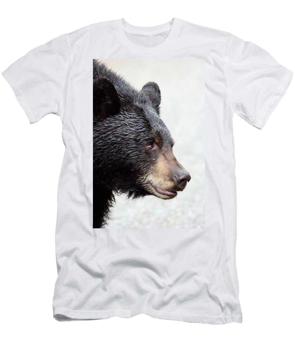 Black Bear Men's T-Shirt (Athletic Fit) featuring the photograph Black Bear by Brian Wartchow