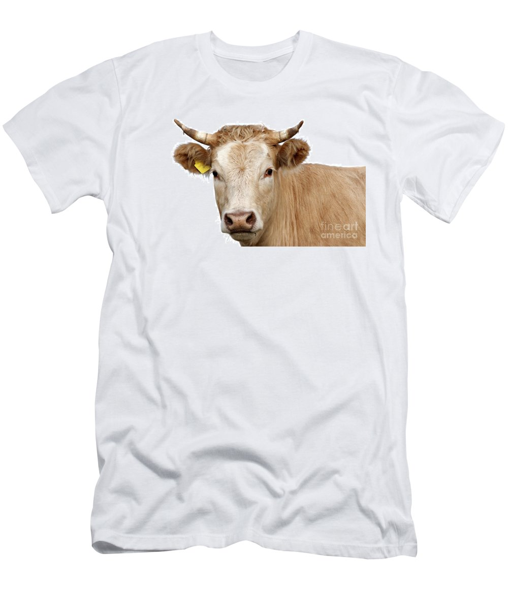 Cow Men's T-Shirt (Athletic Fit) featuring the photograph Detail Of Cow Head by Michal Boubin
