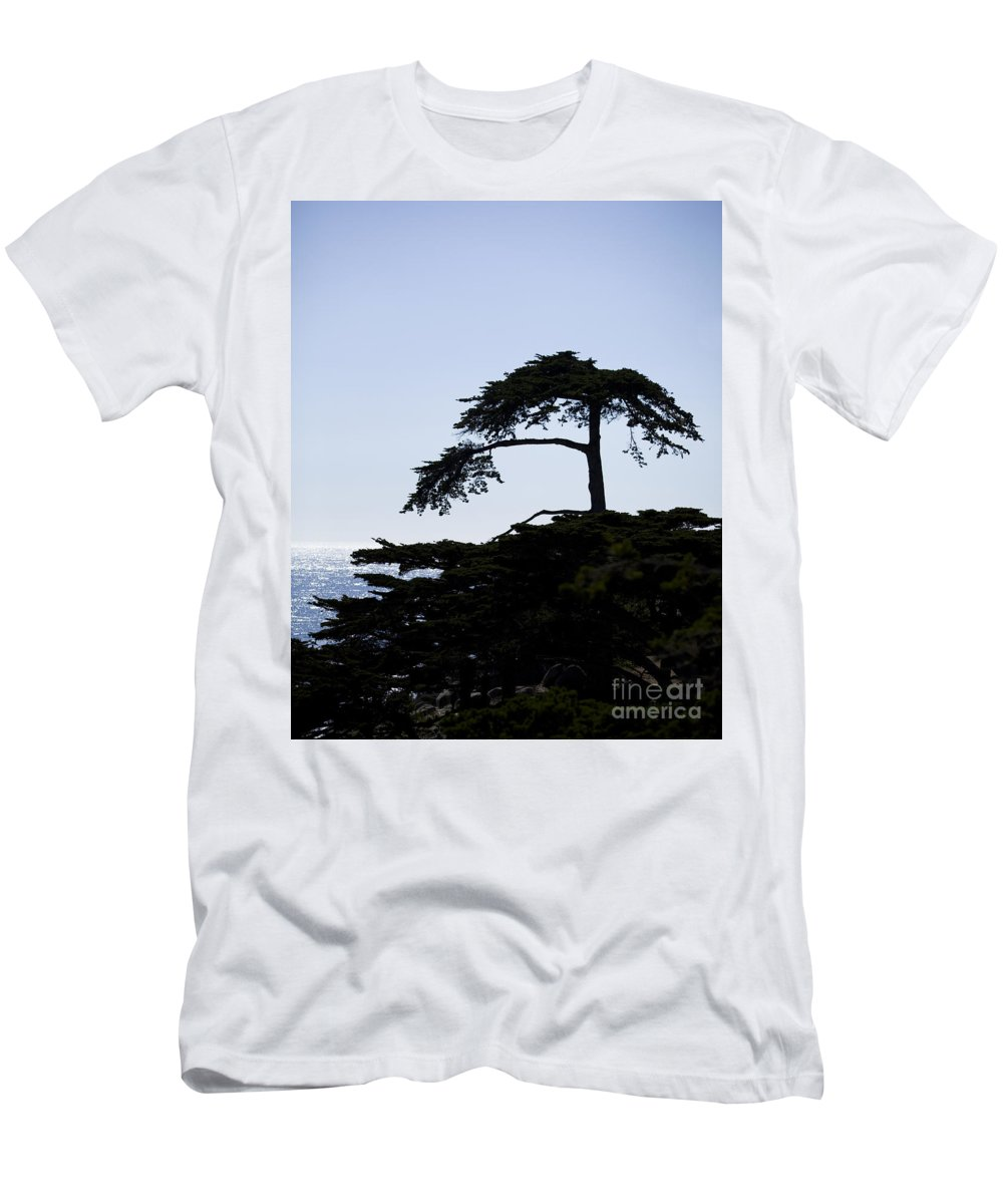 Central Men's T-Shirt (Athletic Fit) featuring the photograph Silhouette Of Monterey Cypress Tree by B Christopher