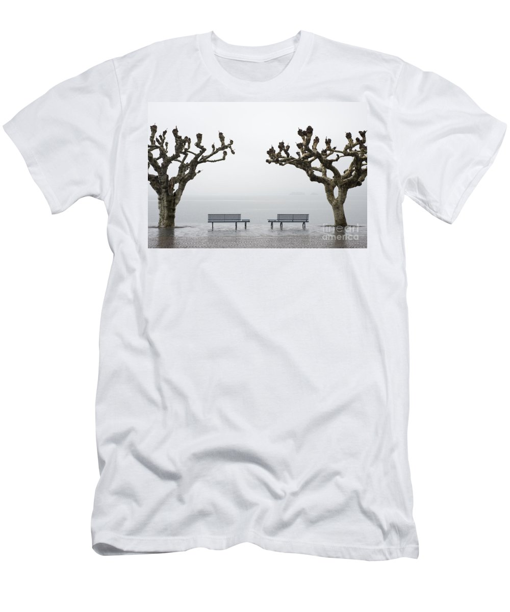 Rain Men's T-Shirt (Athletic Fit) featuring the photograph Benches And Trees by Mats Silvan
