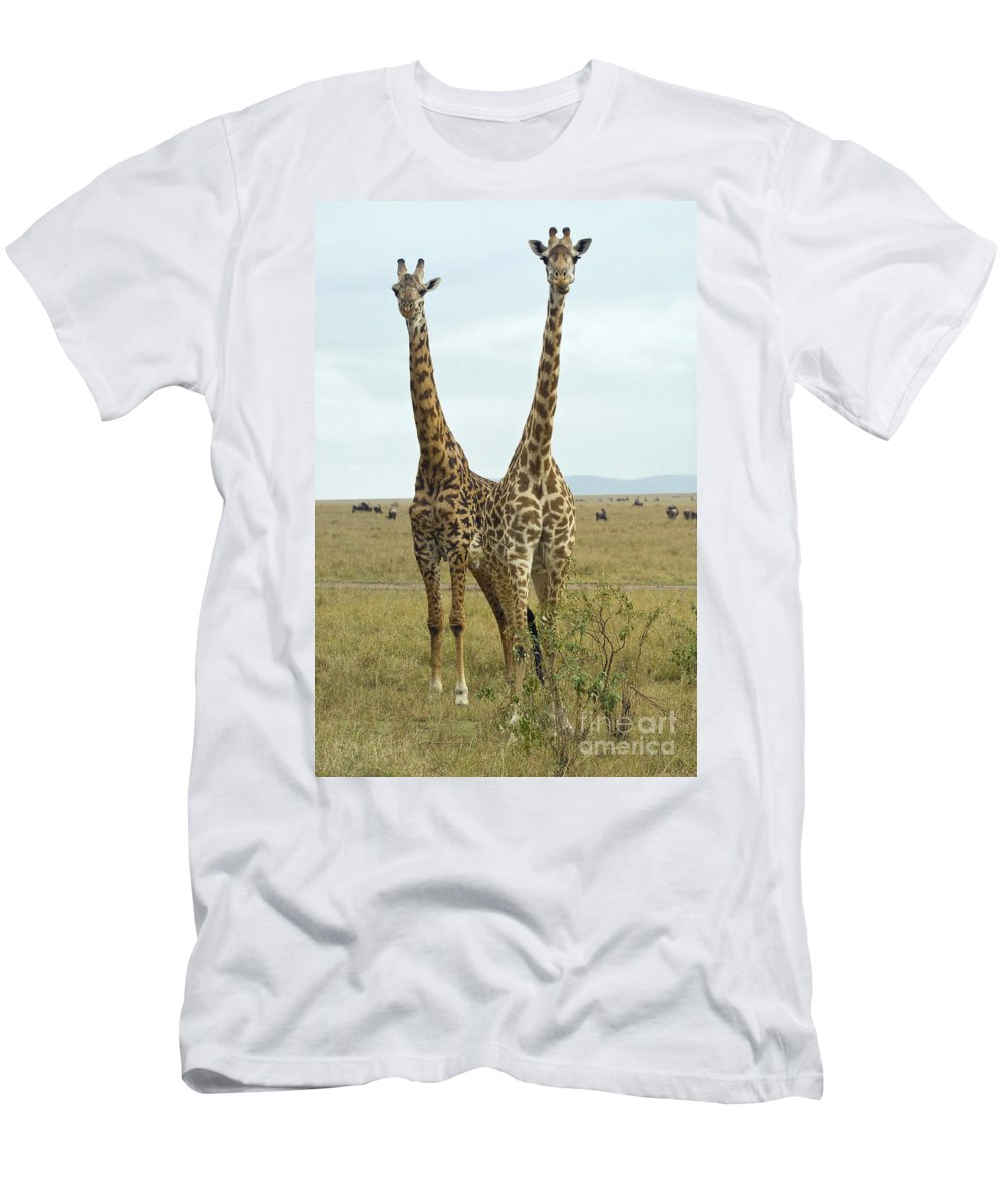 Africa Men's T-Shirt (Athletic Fit) featuring the photograph Giraffe by John Shaw