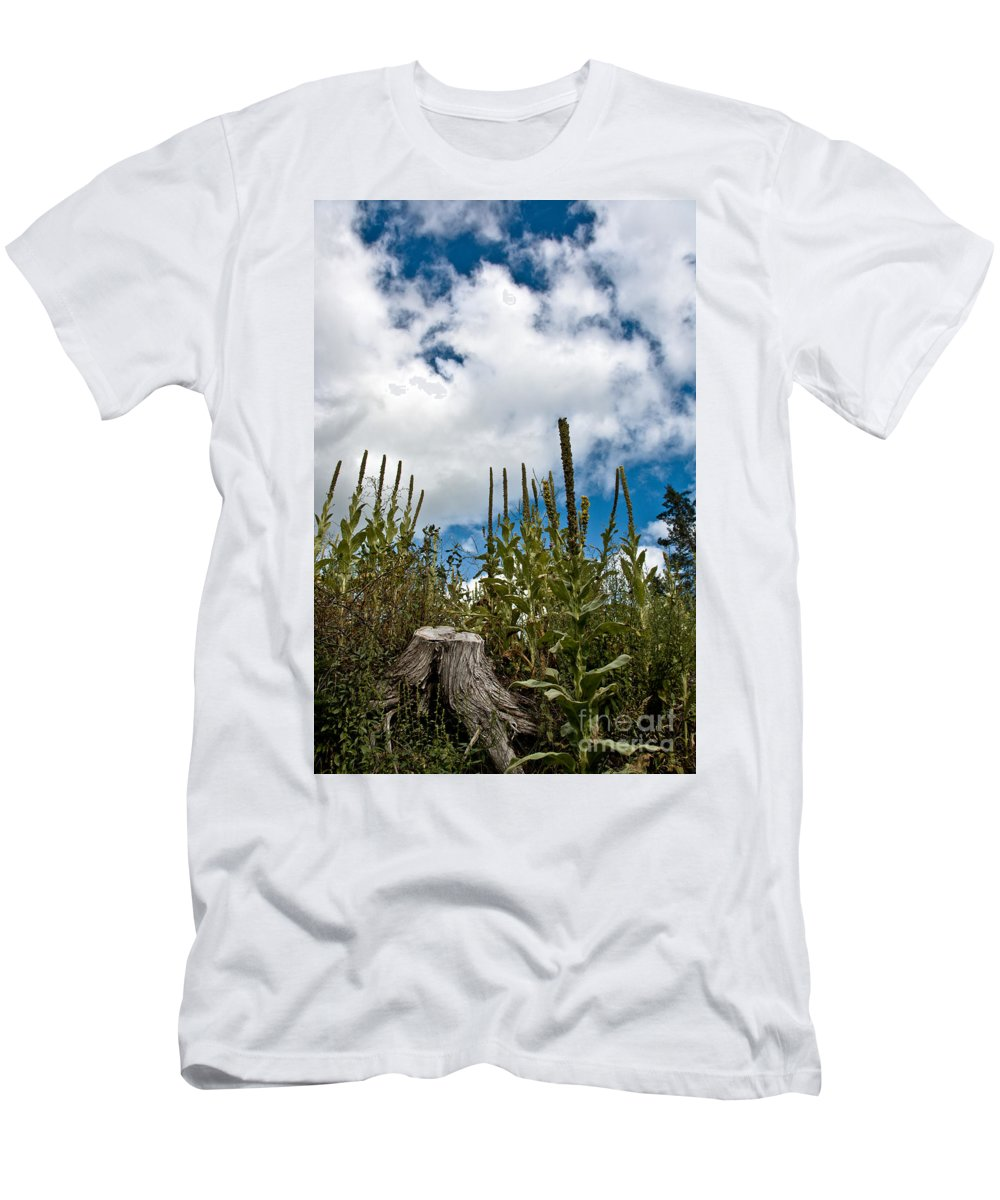 Landscape Photography Men's T-Shirt (Athletic Fit) featuring the photograph Looking Up by Cheryl Baxter