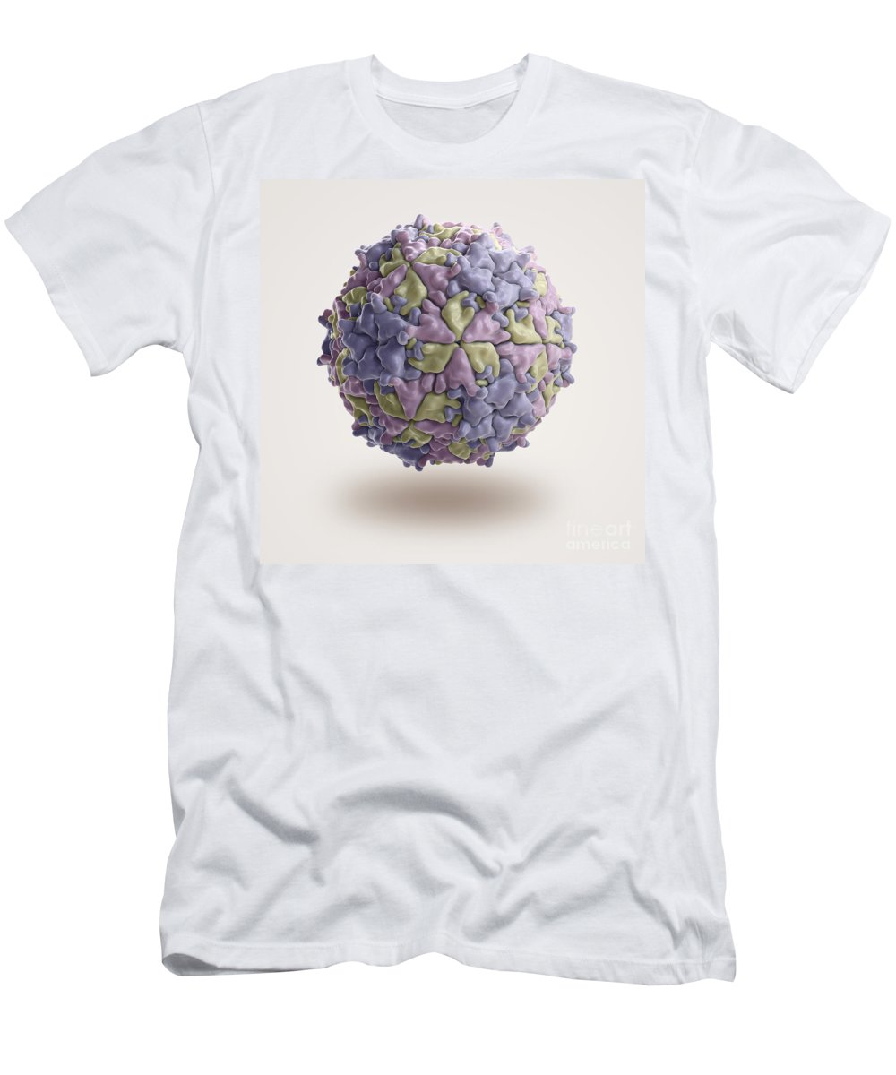 Close-up Men's T-Shirt (Athletic Fit) featuring the photograph Mengo Encephalomyelitis Virus by Science Picture Co
