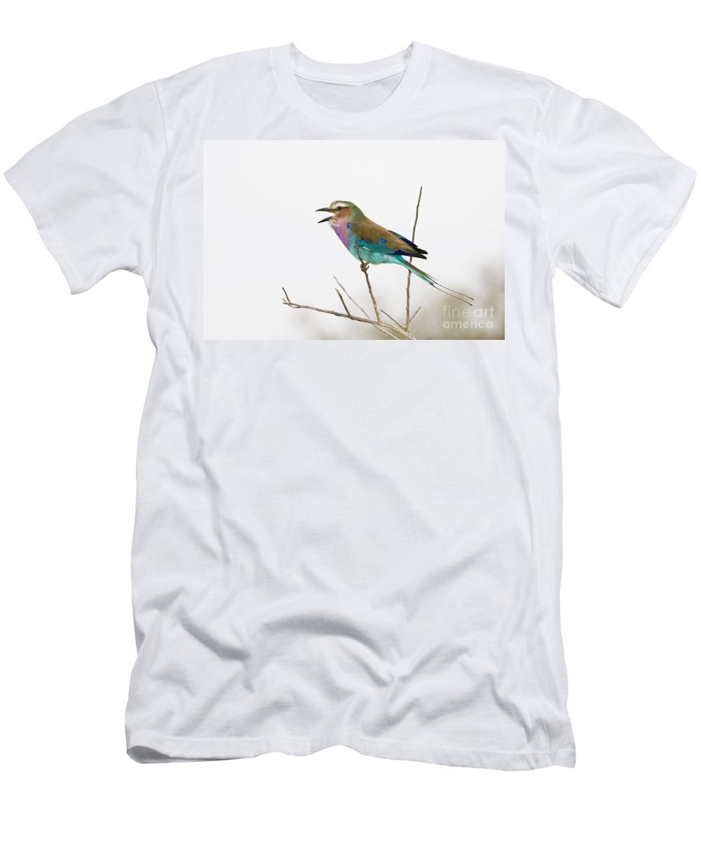 African Fauna Men's T-Shirt (Athletic Fit) featuring the photograph Lilac-breasted Roller by John Shaw