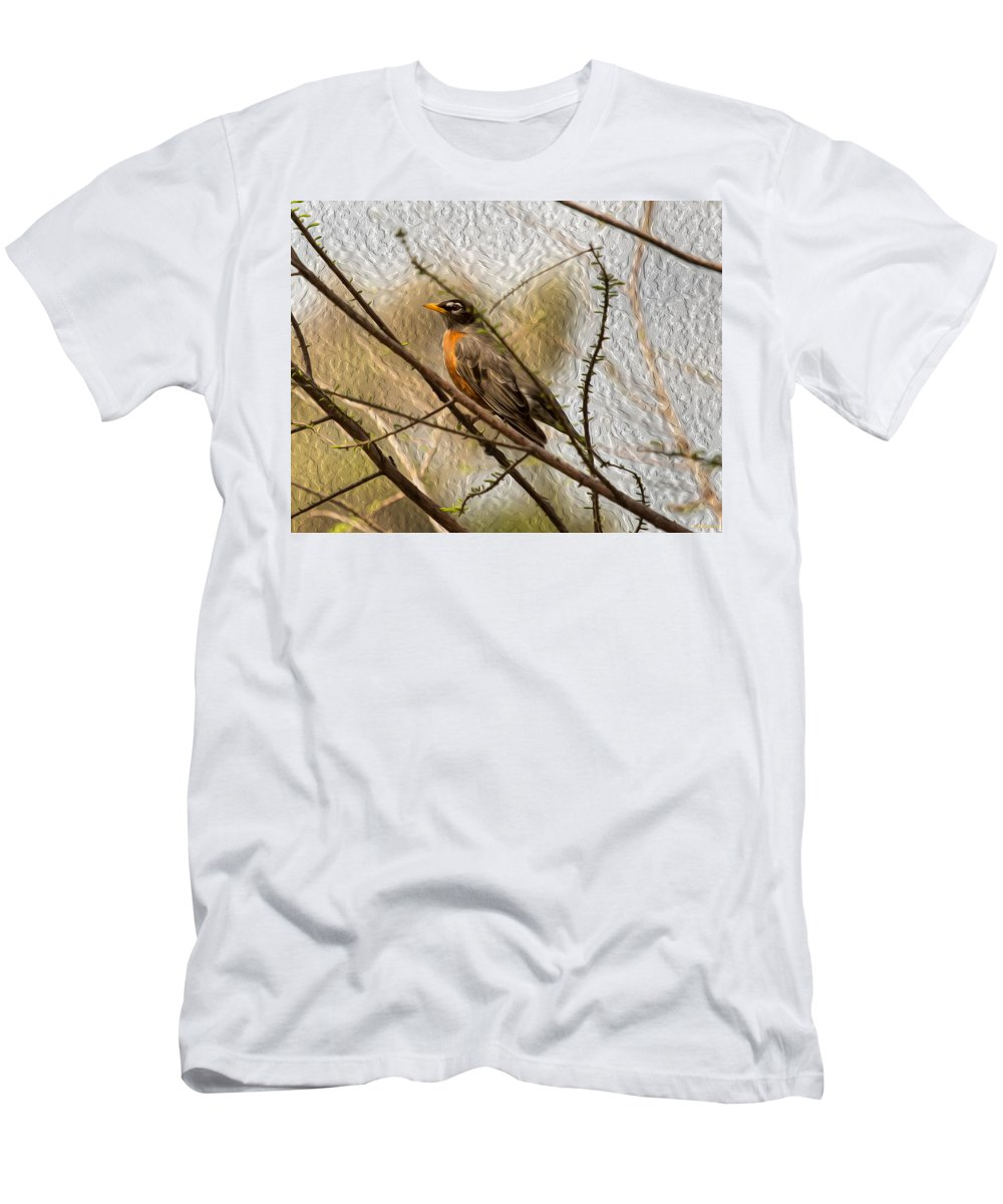 American Robin Men's T-Shirt (Athletic Fit) featuring the photograph American Robin On A Branch by John M Bailey