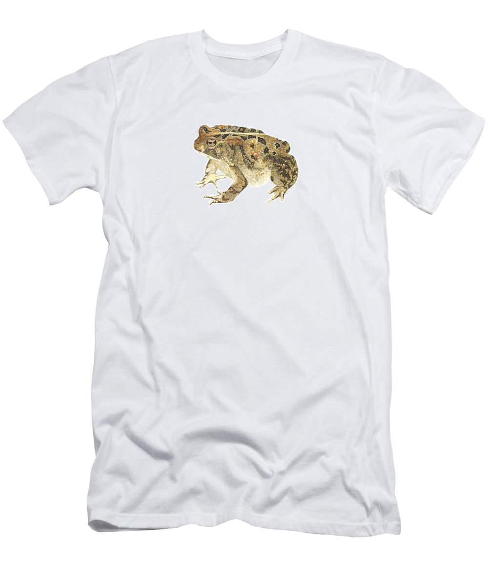Toad Men's T-Shirt (Athletic Fit) featuring the painting American Toad by Cindy Hitchcock
