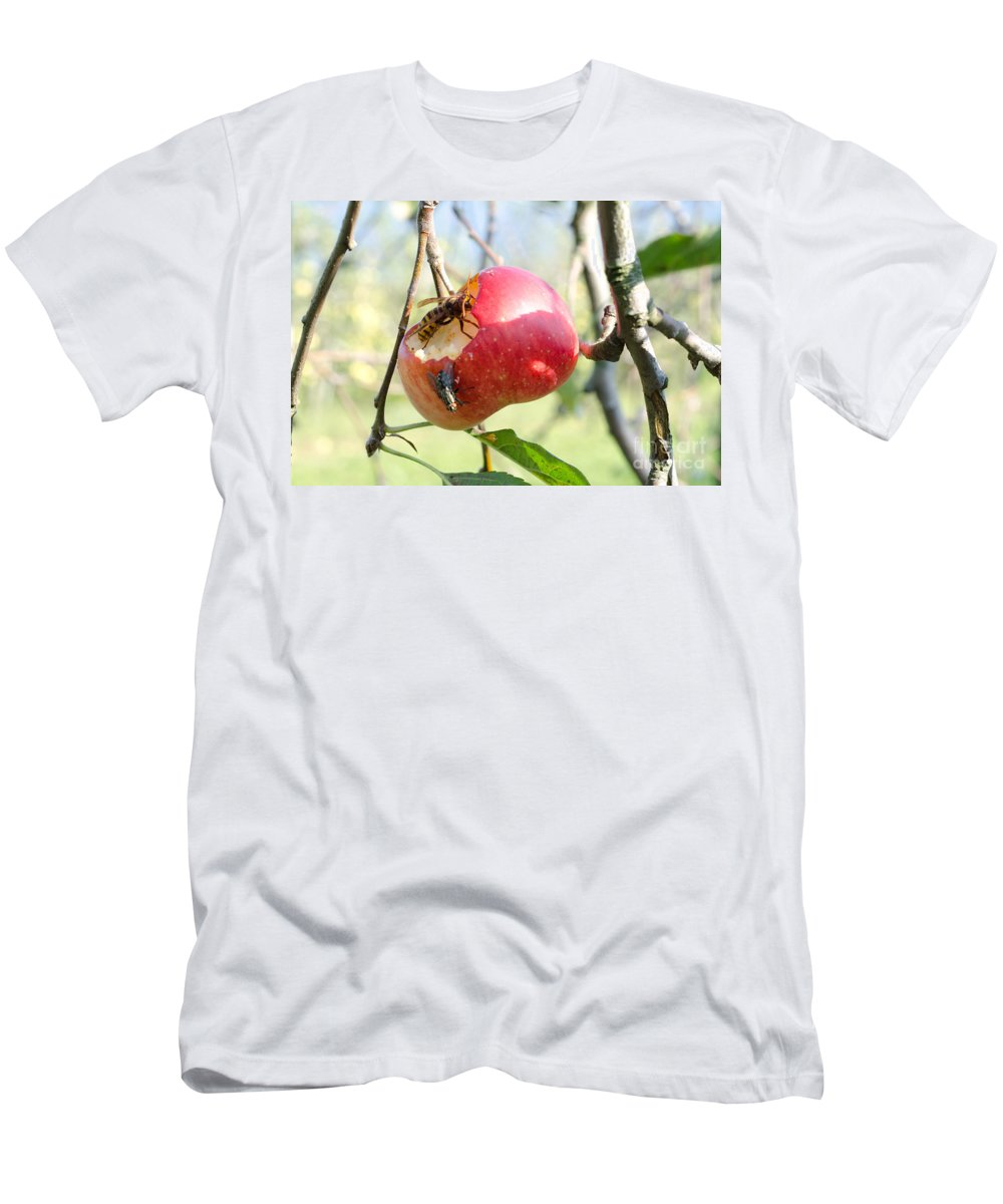 Apple Men's T-Shirt (Athletic Fit) featuring the photograph Apple by Mats Silvan